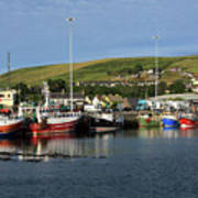 Fishing Fleet At Dingle, County Kerry, Ireland Poster