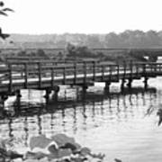 Fishing Pier And Train Tracks Poster