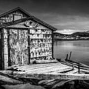 Fishing Shack And Wharf In Norris Point, Newfoundland Poster
