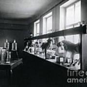 Five Dogs Undergoing Pavlovs Poster