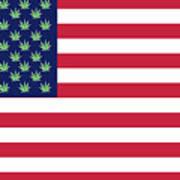 Flag1 Poster