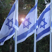Flags Of Israel Blowing In The Wind Poster