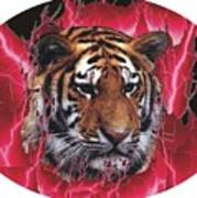 Flame Tiger Poster