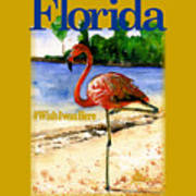 Flamingo In Florida Shirt Poster