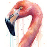 Flamingo Watercolor Illustration Poster