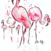 Flamingoes Poster