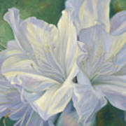 Fleurs Blanches Poster