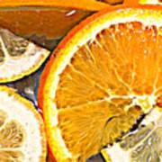 Floating Citrus Poster
