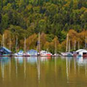 Floating Homes Along Multnomah Channel In Portland Oregon Poster