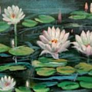 Floating Lillies Poster