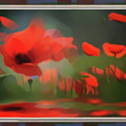 Floating Wild Red Poppies Poster