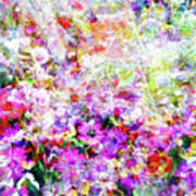 Floral Art Clvi Poster