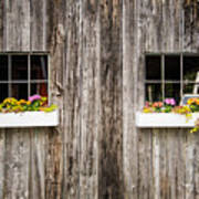 Floral Barn Planters Poster