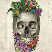Floral Beard Skull Poster