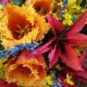 Floral Blast Poster