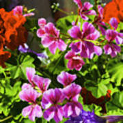 Floral Design 5 Dark Poster