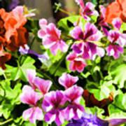 Floral Design 5 Light Poster