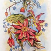 Floral Display 1 Poster