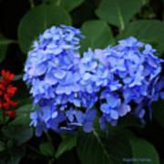 Floral Duet Poster