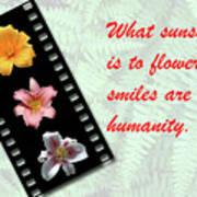 Floral Filmstrip Poster by Bill Barber