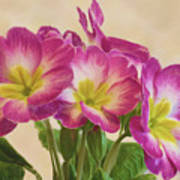 Floral Oil Painting Poster