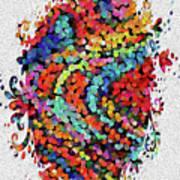 Floral Splash 2 Poster