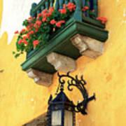 Flores Rojas En Cartagena Poster