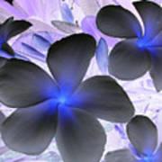 Florescent Flowers Poster