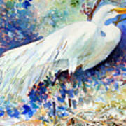 Florida Egret With Nest Poster