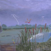 Florida Everglades Thunderstorm Poster