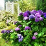 Flower - Hydrangea - Lovely Hydrangea  Poster by Mike Savad