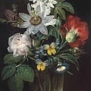Flower And A Delphinium In A Glass Vase Poster