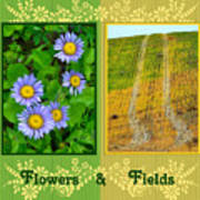 Flower And Fields Poster