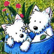Flower Bed Westies Poster