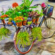 Flower Bike Collection Poster