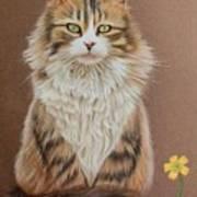Flower Cat Poster
