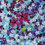 Flower Fantasy Guatemala Poster