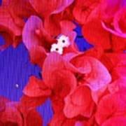 Flower Fantasy Poster
