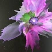 Flower In Black Poster