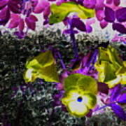 Flower Like Purple And Yellow Poster