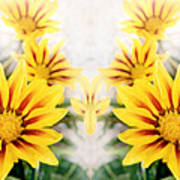 Flower Montage Poster