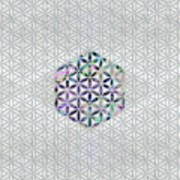Flower Of Life Abalone Shell On Pearl Poster