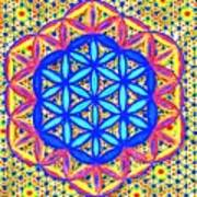 Flower Of Life Fractle Poster