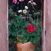 Flower Pot In Window Poster