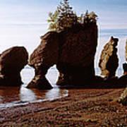 Flower Pot Rocks On The Beach, Hopewell Poster