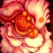 Flower Shell Poster