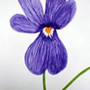 Flower3 Poster