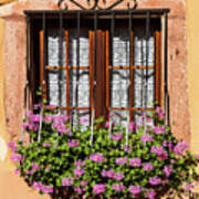 Flowered Window # II Poster