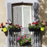 Flowered Window Poster