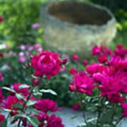 Flowering Landscape Poster